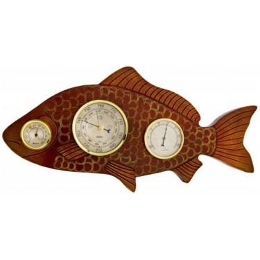 Бриг+ М-Рыба Метеостанция