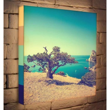 Лайтбокс для гостиной или спальни Дерево на берегу BoxPop 45x45-035